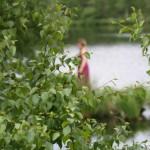 art-und-werk-natur-fotografie-anna-mastalerz_20
