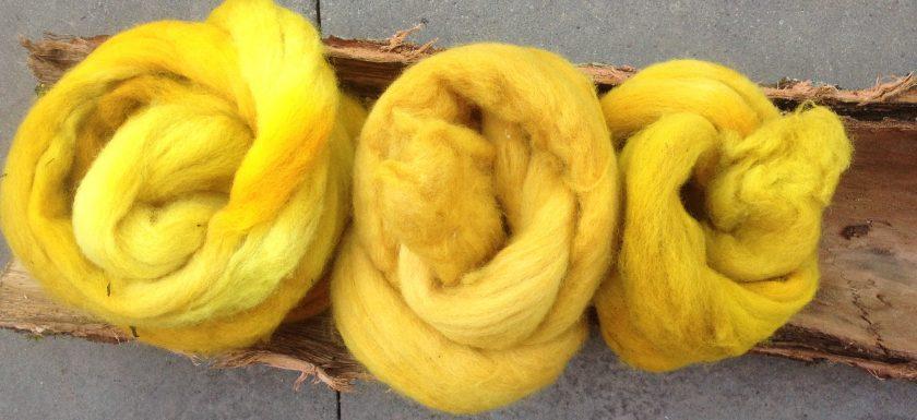 organisches färben von wolle mit pflanzen